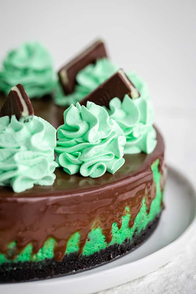close up of mint whipped cream on mint chocolate cheesecake