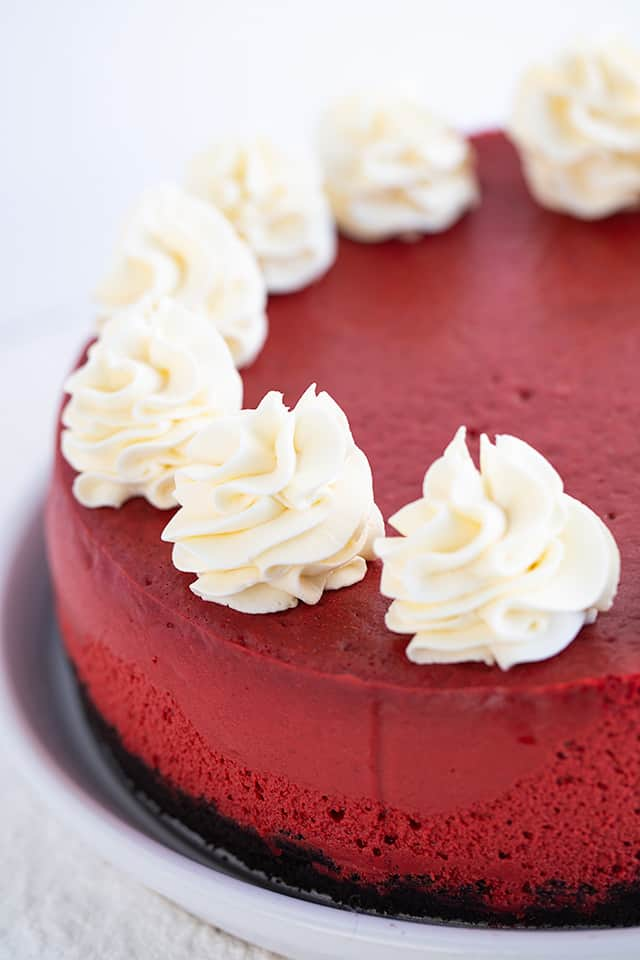 red velvet cheesecake on a white texture surface with swirls of cream cheese whipped cream