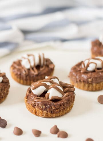 mini cheesecakes with chocolate chips in front of it on a white background