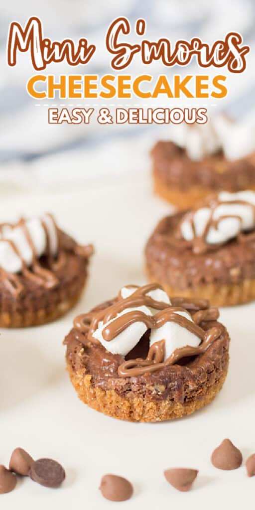 zoomed in photo of mini s'mores cheesecakes with text at the top