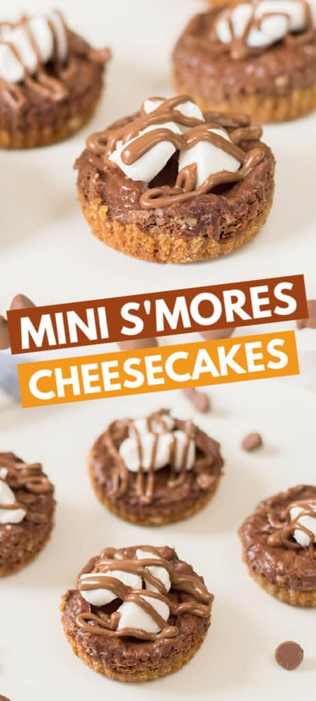 collage of mini smores cheesecake photos with block text in the middle